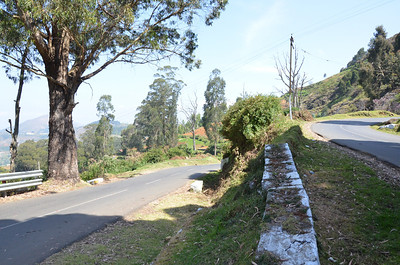Way to Ooty from Mysore
