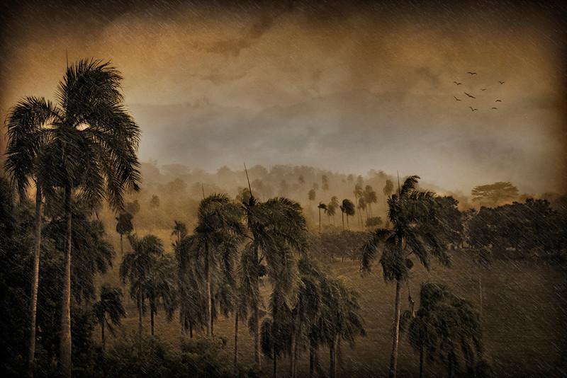 Steven Harrison - Approaching Storm