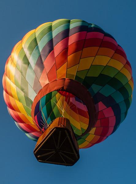 Balloons-7299098.jpg