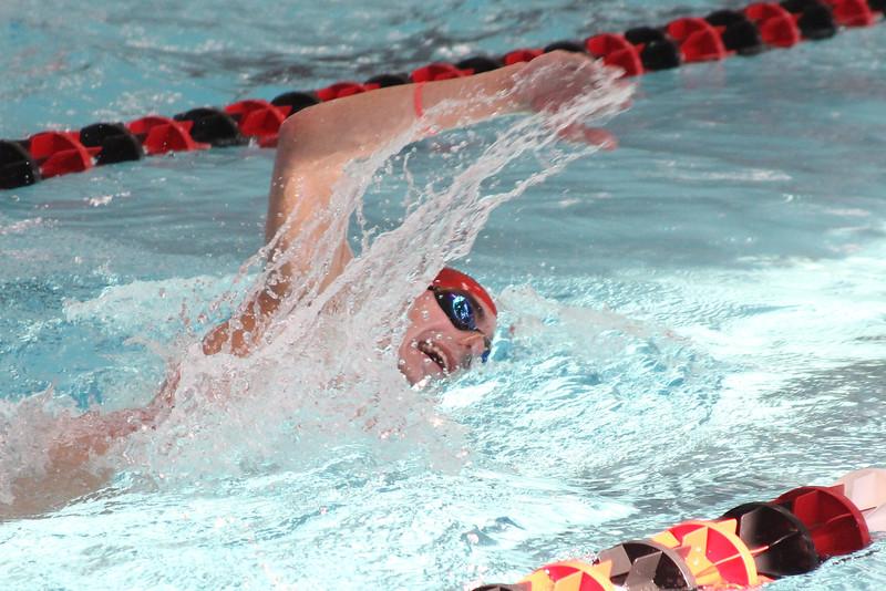 Josh Hanson races the freestyle.