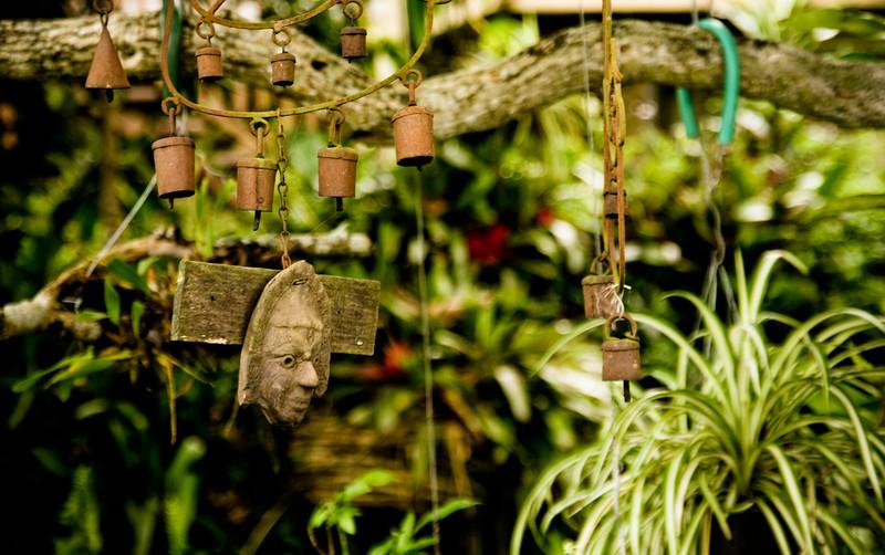 garden (14).jpg