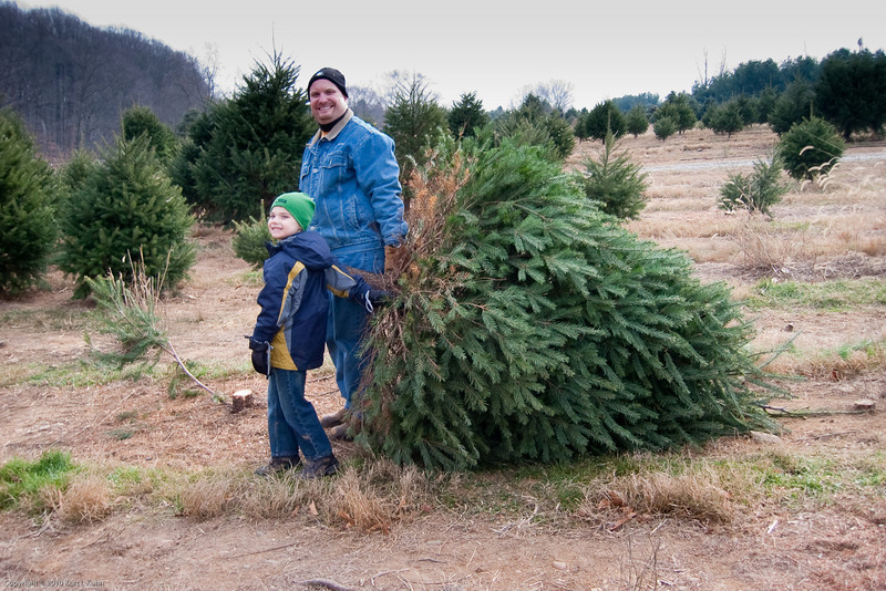 K.C. and dad haul the tree down to get it wrapped.