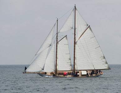 Pendennis Cup, Falmouth 2014
