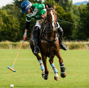 Polo - International Ladies Tournament -Phoenix Park