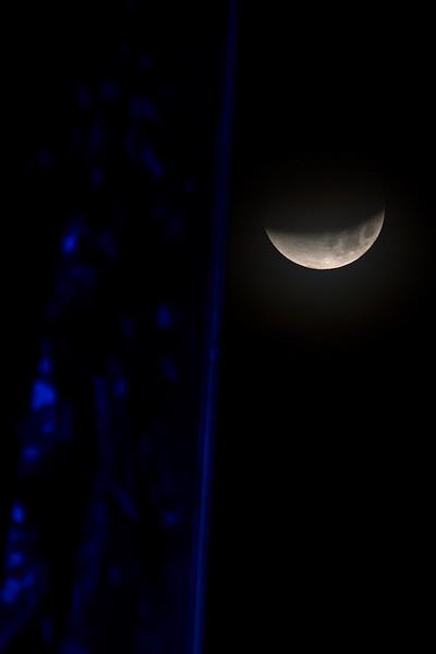 2018_0131-Moon-8007.jpg