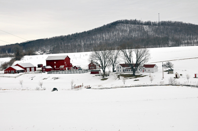 Farm 01.jpg