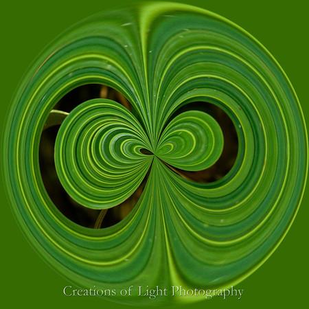 Spirals of life VIII