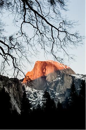Yosemite Calligraphy - 優山美地书法