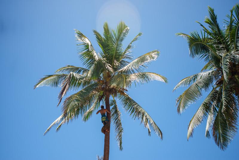 Hawaii2019-670.jpg