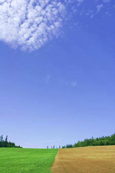 SUMMER 16.jpg