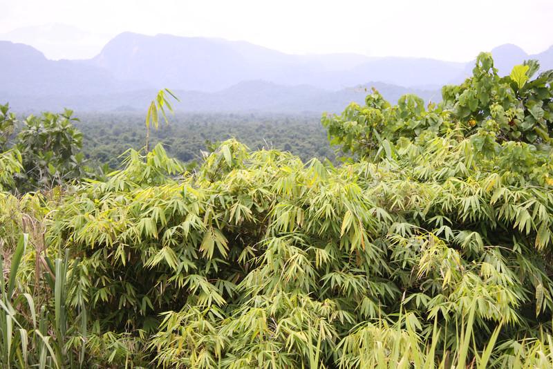 Papua New Guinea 2011 157.JPG