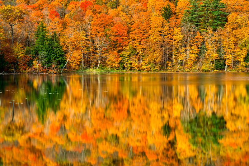 Vermont Fall 2019-8.jpg