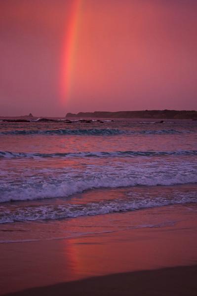 2013-09-16_Phillip-Island_copyright_David_Brewster_1693_DJB_rights_reserved.jpeg