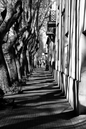 Buenos Aires Pics