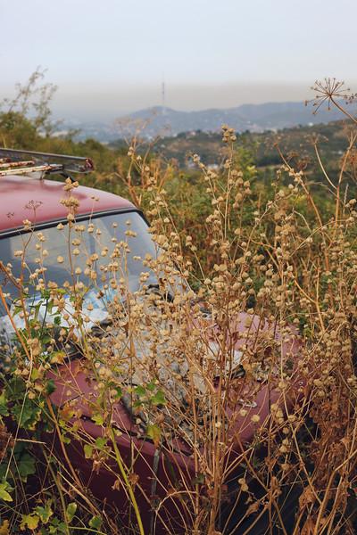 An abandoned car near Almaty, 2017.