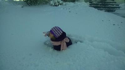 Maddie v. Snow Day - Feb 2015