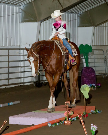 2013 Appaloosa & Open Horse Show Sat June 15th
