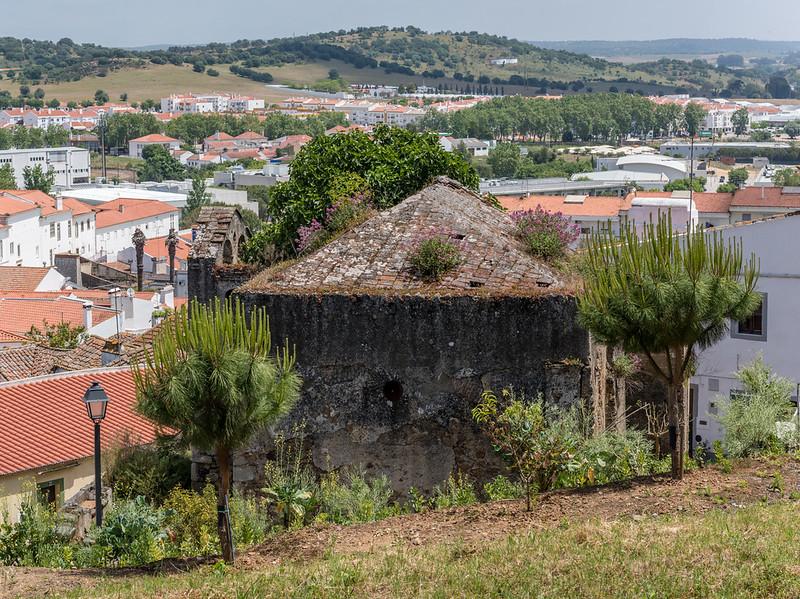 Coimbra 6.jpg