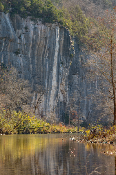 Roark Bluff at Steel Creek