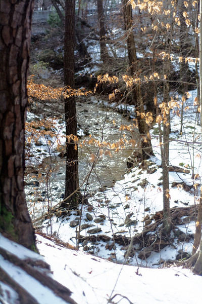 Snow Covered Eno