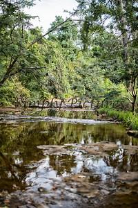 Banita Creek  (27)