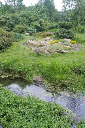 July 2016 Laurelwood Rock Garden