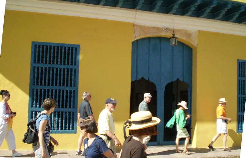 Tigers In Trinidad - Elizabeth Yerkes
