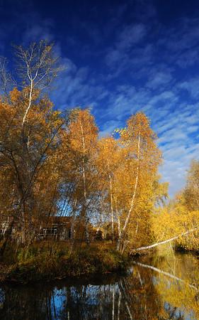 North Xinjiang 2011