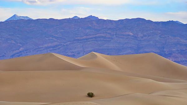 Death Valley - 2019