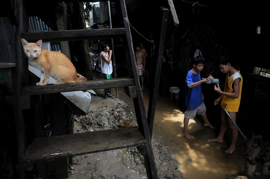 . A cat sits on stairs above a pile of mud as residents return to their houses to clean up the mess of water and mud brought by the floods in San Mateo, east of Manila on August 22, 2013.  Disaster-weary Philippine residents mopped up on August 22 after four days of torrential rain that officials said had killed 17 people and forced more than half a million from flooded homes. NOEL CELIS/AFP/Getty Images