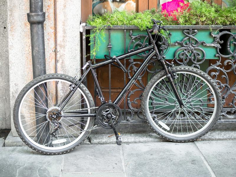108 May 21 Bike  (1 of 1).jpg