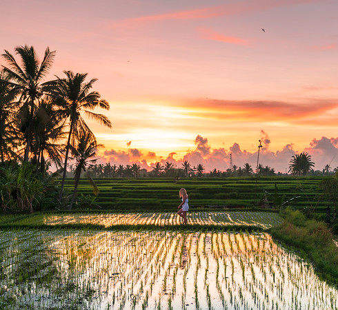 The Chedi Club | Ubud, Bali