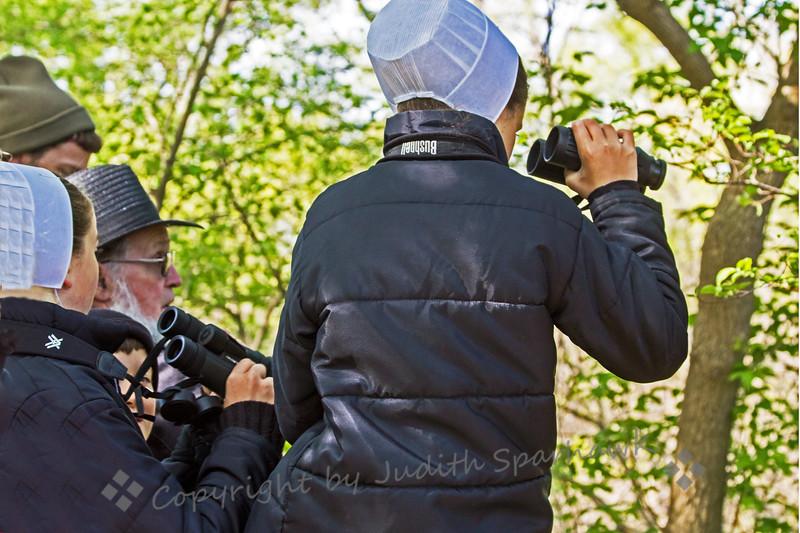 Amish Birdwatchers