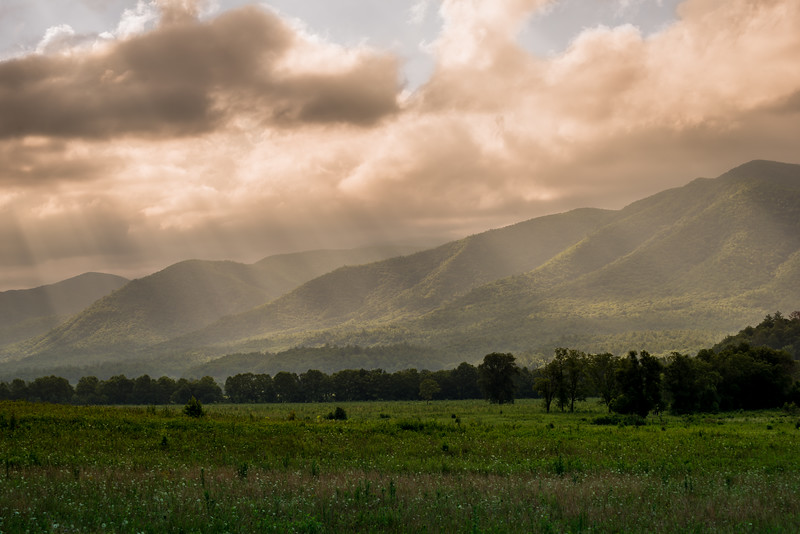 Cade's Cove Morning