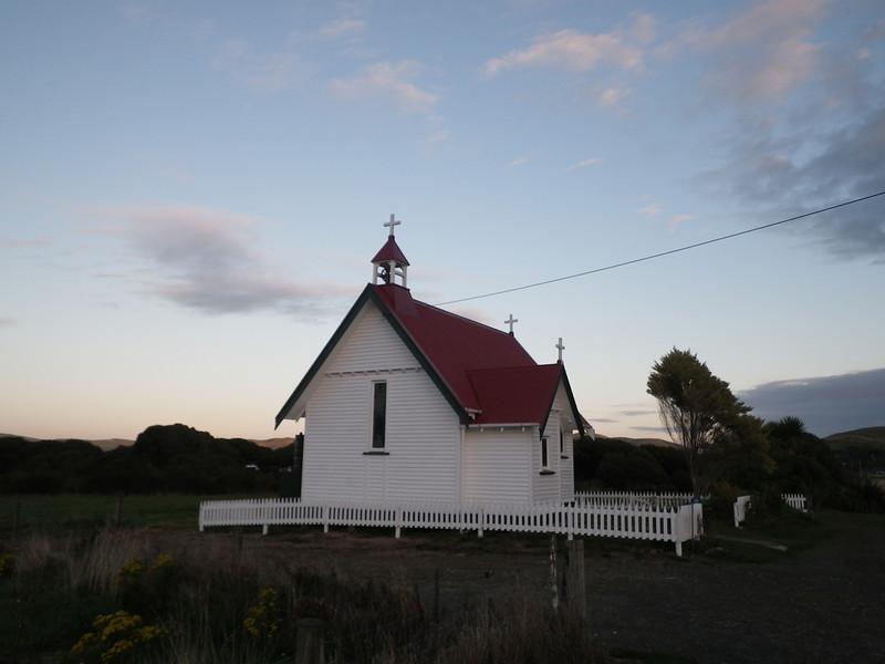 NZ (171) Curio Bay.JPG