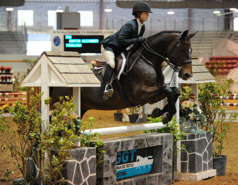 Horse show (64).jpg