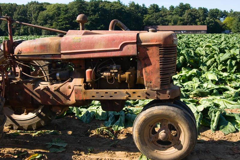 Connecticut+Tobacco+Fields+067-1050661015-O.jpg
