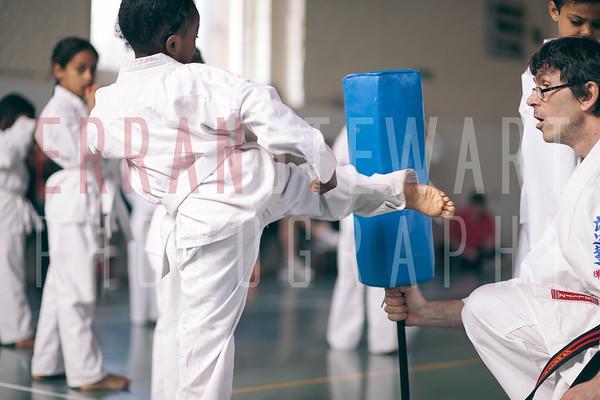 Seido Karate Fulham - May Grading 2014