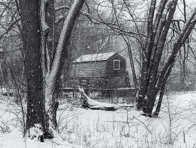 2021_02_Concord snow20210201-3M3A8603-Edit-Edit.jpg