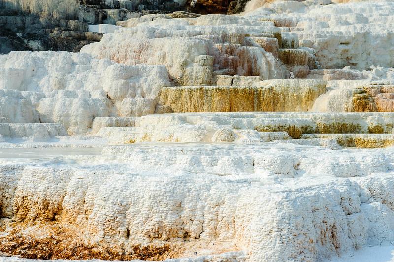 20130816-18 Yellowstone 217.jpg
