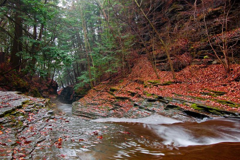 Water Falls and Streams