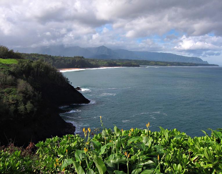 Kauai'10_S90_049.jpg