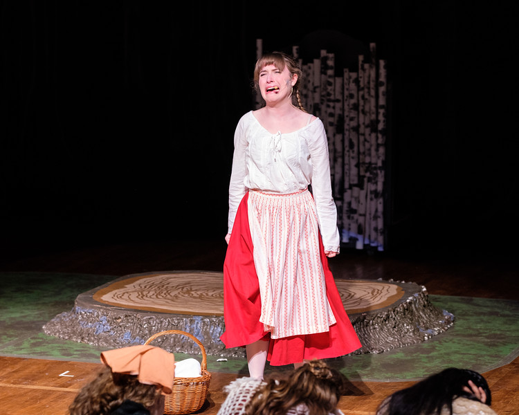 2018-03 Into the Woods Performance 1165.jpg