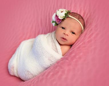 Kaylee's Newborn Session
