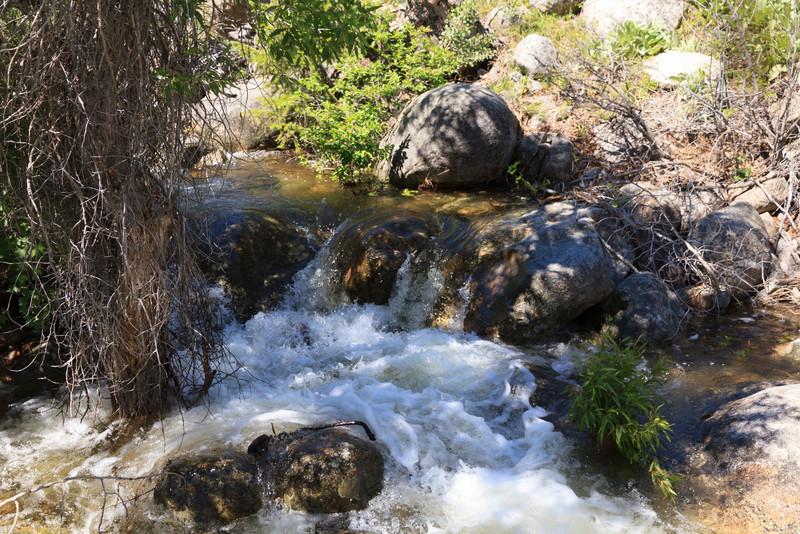 2011_07_03 Wyoming 042.jpg