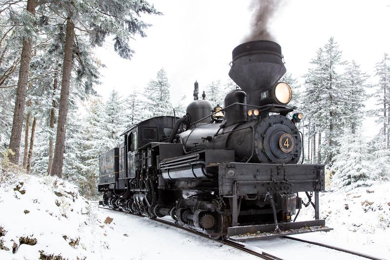 WVWS Cass Scenic RR Bald Knob Snow-8424.jpg