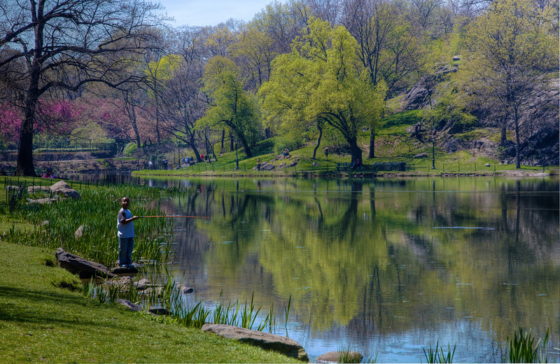 Big Game Fishing in Central Park