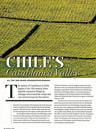 Chile's Casablanca Valley