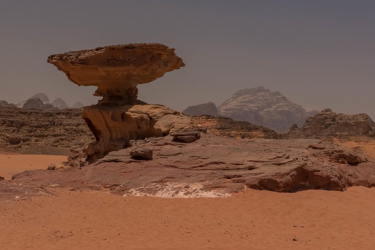 More Desert Details