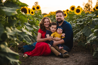 Miller's in the sunflowers